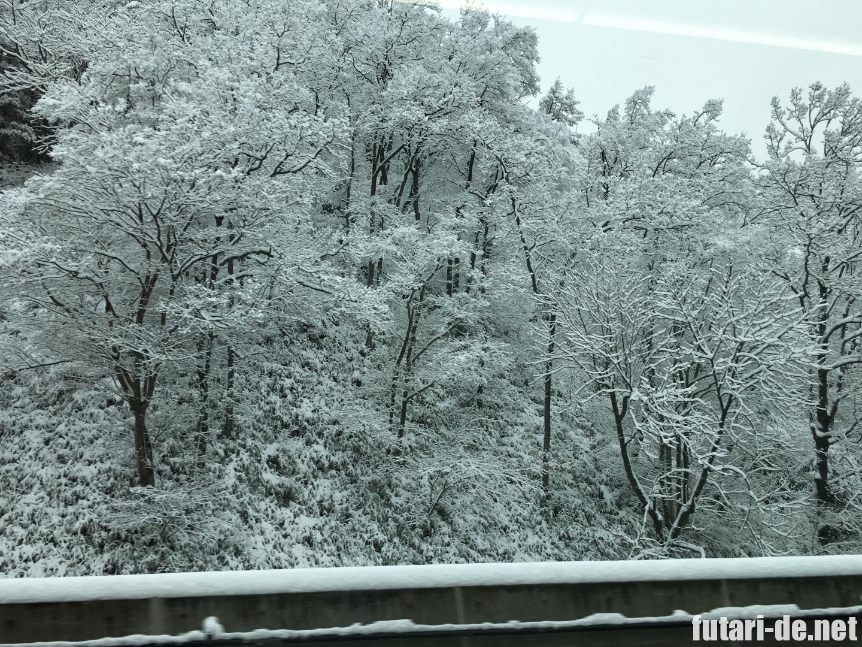 北陸新幹線 はくたか 555号 長野県