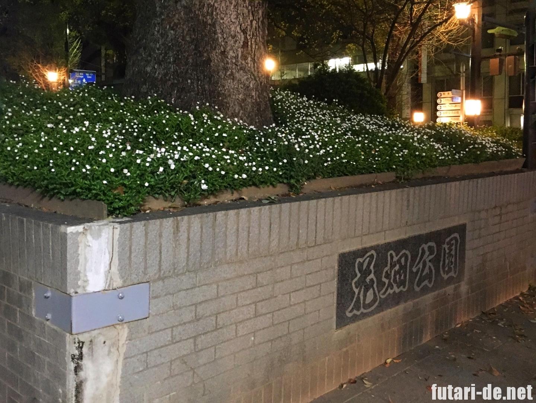 熊本県 熊本市 花畑公園 交通センター 高速バス りんどう号