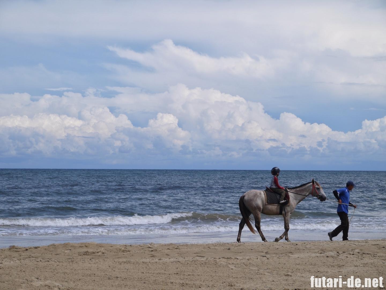 マレーシア コタキナバル シャングリララサリア ビーチ 乗馬体験