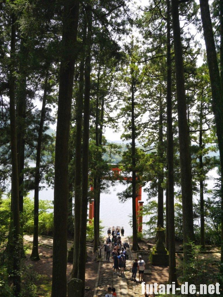 箱根 箱根神社 平和の鳥居