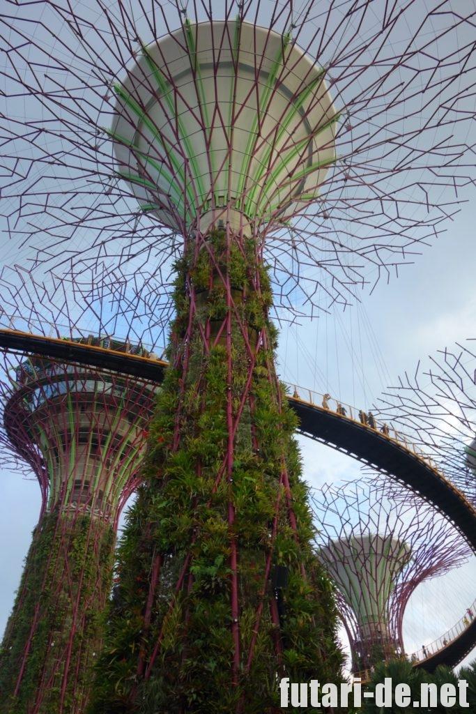 ガーデンバイザベイ シンガポール