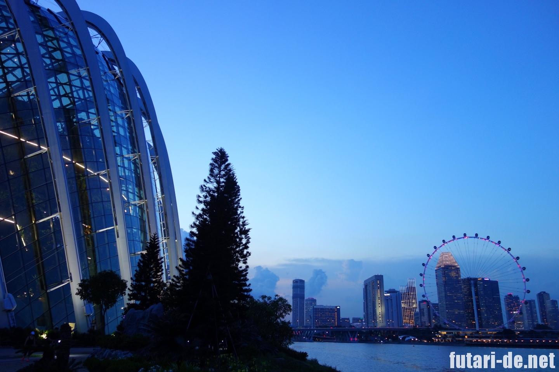 シンガポール 夜景 シンガポールフライヤー クラウドフォレスト 夜景