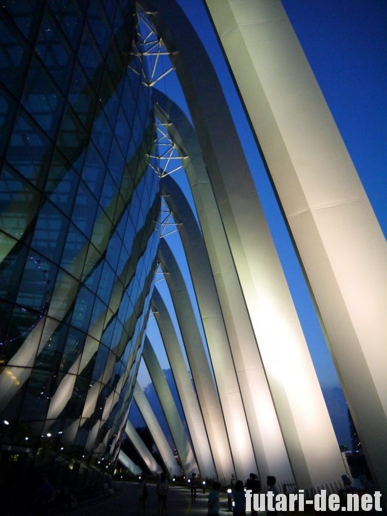 シンガポール 夜景 フラワードーム