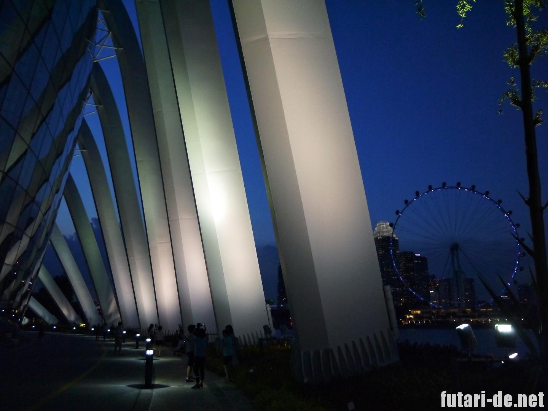 シンガポール フラワードーム 夜景 シンガポールフライヤー