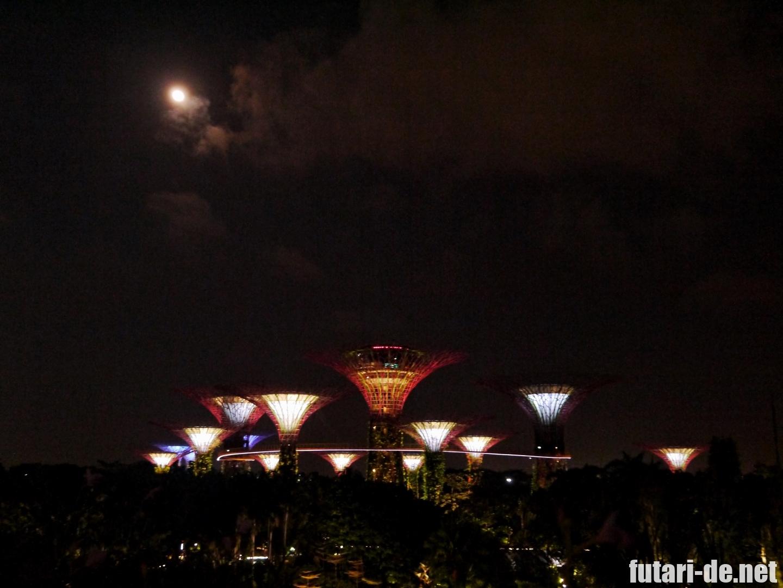 シンガポール ガーデンズバイザベイ ライトアップ