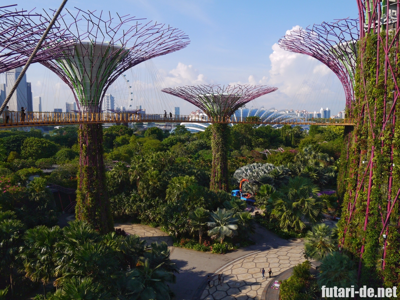 シンガポール ガーデンズバイザベイ OCBCスカイウェイ