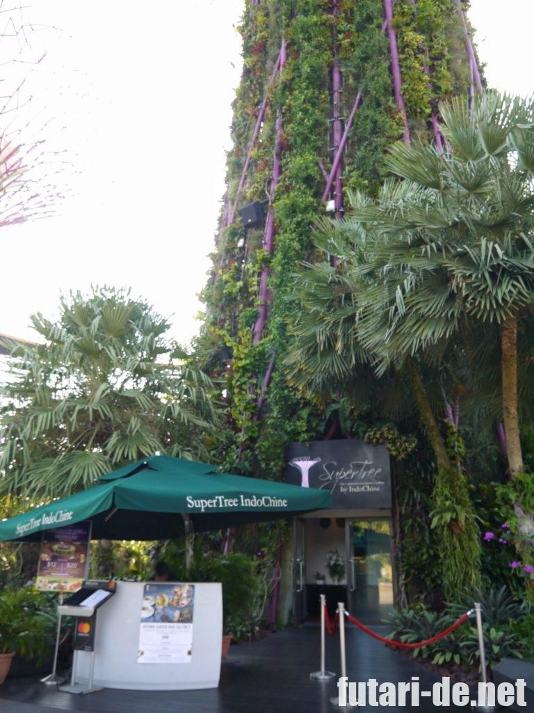 シンガポール ガーデンズバイザベイ OCBCスカイウェイ Indochine レストラン